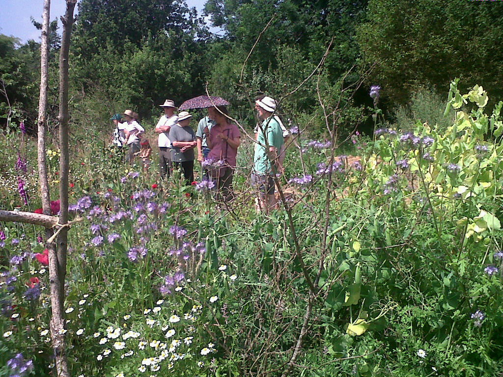 Backyard Permaculture Book : Guided Tours of the Trust  Scythe Cymru